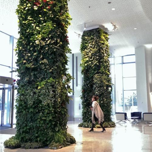 01 IndoorGreenWall